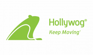 logo-format_Hollywog-300x180